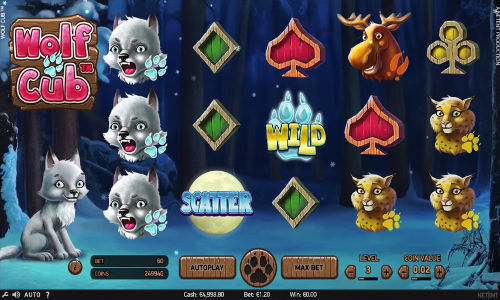 Video Wolf 16129